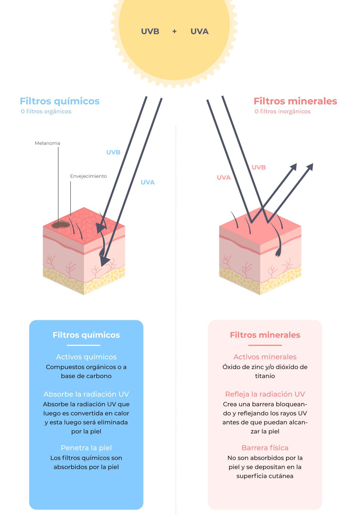 infografía que muestra las diferencias entre un fotoprotector químico y físico